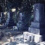 ⑪寅彦墓所